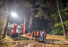 Bùng phát cháy rừng do nắng nóng, hơn 40.000 m2 rừng bị thiêu rụi