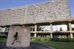 Tương lai của việc làm và vấn đề quấy rối trong môi trường làm việc trên bàn nghị sự ILO