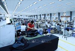 Triển vọng kinh tế Việt Nam trong bối cảnh tăng trưởng kinh tế châu Á bị thu hẹp