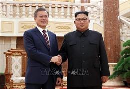 Tổng thống Hàn Quốc muốn gặp nhà lãnh đạo Triều Tiên trước khi đón Tổng thống Mỹ