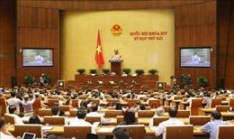 Kỳ họp thứ 7, Quốc hội khóa XIV: Biểu quyết ba Luật và thảo luận hai dự án Luật