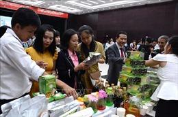 Đẩy mạnh ứng dụng khoa học công nghệ phát triển dược liệu vùng Tây Nguyên, Nam Trung Bộ