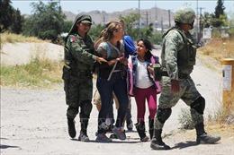 Tổng thống Mexico khẳng định không chỉ thị binh lính bắt giữ người di cư vượt biên