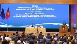 Hiệp định Thương mại tự do Việt Nam - EU - Bài 1: Tận dụng tối đa lợi ích