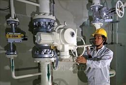 Bảo đảm cung ứng điện - Bài 3: Loay hoay bài toán nhiên liệu