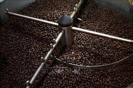 EVFTA: 'Cánh cửa tiêu chuẩn' đối với nông sản Việt
