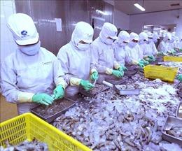Các nước ASEAN thống nhất hợp tác và phát triển nghề cá