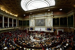 Hạ viện Pháp ủng hộ dự luật đối phó với phát ngôn thù hận trên mạng Internet