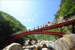 Hàn Quốc cân nhắc mở lại tour du lịch tới Triều Tiên