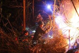 Cơ bản khống chế được vụ cháy rừng tái bùng phát tại núi Nầm, Hà Tĩnh