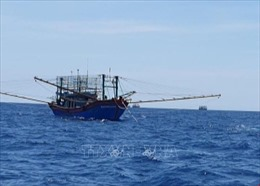 Cứu hộ các tàu cá và ngư dân gặp sự cố trên biển