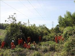 Bảo vệ hành lang lưới điện trước nguy cơ cháy rừng
