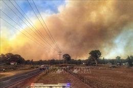Mùa cháy rừng đến sớm ở Australia