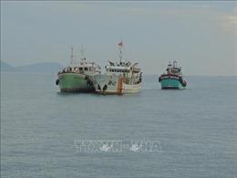 Tàu kiểm ngư lai dắt hai tàu cá gặp nạn vào bờ
