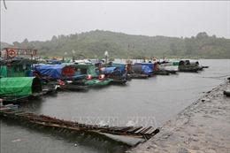 Quảng Ninh khẩn trương khắc phục hậu quả cơn bão số 3