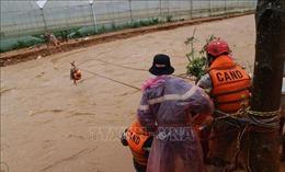 Gần 1.400 căn nhà ở Lâm Đồng bị ngập do mưa lũ