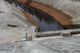 Nguyên nhân ban đầu làm nước tại hệ thống thủy lợi Ngàn Trươi chuyển màu
