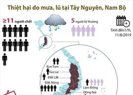 Thiệt hại nghiêm trọng do mưa, lũ tại Tây Nguyên, Nam Bộ