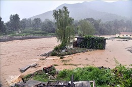 Nhiều quốc gia châu Á gồng mình chống chọi bão lũ