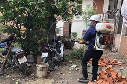 Bảy người tử vong do sốt xuất huyết tại TP Hồ Chí Minh