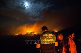 Cháy rừng dữ dội trên đảo nghỉ dưỡng Gran Canaria, Tây Ban Nha