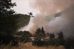 Sơ tán hàng trăm du khách do cháy rừng tại đảo Samos, Hy Lạp