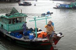 Các tỉnh, thành phố từ Quảng Ninh đến Khánh Hòa chủ động ứng phó với áp thấp nhiệt đới trên biển Đông