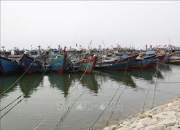 Thừa Thiên - Huế cấm biển, chủ động ứng phó áp thấp nhiệt đới