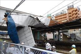 Bão Faxai quét qua Tokyo, ít nhất 43 người thương vong