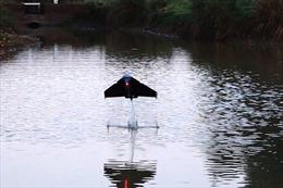 Sáng chế robot 'cá bay'phục vụ nghiên cứu môi trường
