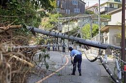 Nhật Bản: Một số thành phố vẫn chưa thể khôi phục được mạng lưới điện sau bão