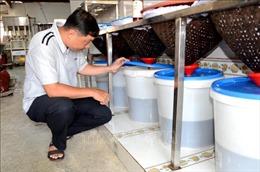 Làng biển Nam Ô - Bài 2: Gìn giữ nét văn hóa truyền thống cha ông