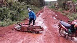 Mấy chục năm khốn khổ vì con đường lầy lội ở Thống Nhất, Bình Phước