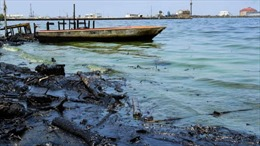 'Thủy triều đen'bao phủ hồ nước Maracaibo của Venezuela