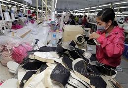 Cơ cấu mặt hàng xuất nhập khẩu Việt Nam - Israel có tính bổ sung