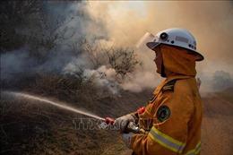 Cháy rừng diễn biến phức tạp ở Australia