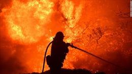 Cháy rừng thiêu rụi hàng chục ngôi nhà, hơn 1.900 hộ dân phải sơ tán