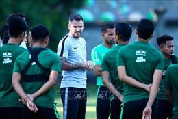 HLV đội tuyển Indonesia: Việt Nam đã có một bước tiến dài