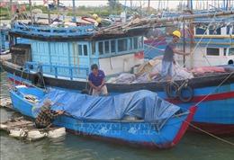 Từ sáng 30/10, Phú Yên cho học sinh nghỉ học để tránh bão số 5
