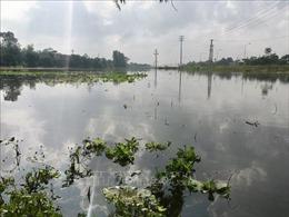 Nghệ An: Khẩn trương ứng phó với mưa lớn, ngập lụt có thể xảy ra