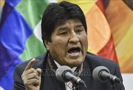 Bolivia: Phe đối lập đề nghị Quốc hội triệu tập cuộc bầu cử Tổng thống mới
