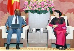 Chủ tịch Quốc hội Nguyễn Thị Kim Ngântiếp Giám đốc quốc gia Ngân hàng Thế giới tại Việt Nam