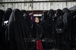 Hà Lan bắt giữ 2 nữ công dân tham gia IS hồi hương