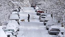 Bão tuyết đe dọa kỳ nghỉ lễ Phục Sinh của hàng triệu người dân Mỹ