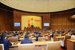 Kỳ họp thứ 8, Quốc hội khóa XIV: Thông cáo báo chí số 28