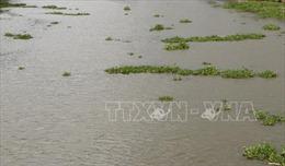 Khẩn trương xác minh thông tin và tìm kiếm nạn nhân chìm tàu trên sông Văn Úc