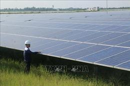 Phê duyệt Nhiệm vụ lập Quy hoạch tổng thể về năng lượng quốc gia