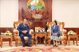 Phó Thủ tướng Trương Hòa Bình chào xã giao Chủ tịch Quốc hội Lào