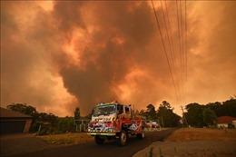 Australia ban bố tình trạng khẩn cấp lần ba do cháy rừng