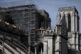 Nhiều kiến trúc sư đề xuất xây dựng phần mái của Nhà thờ Đức Bà bằng gỗ